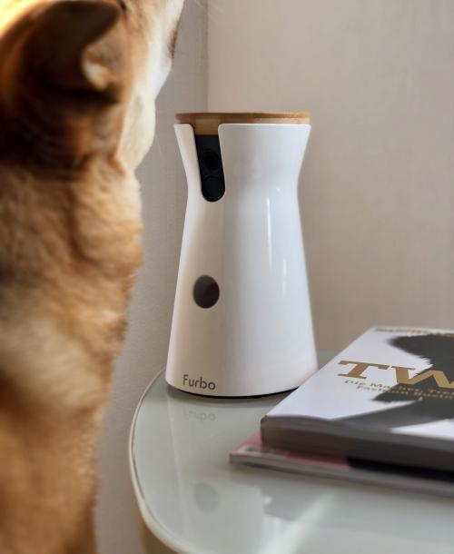 Furbo Dog kamera – always be together